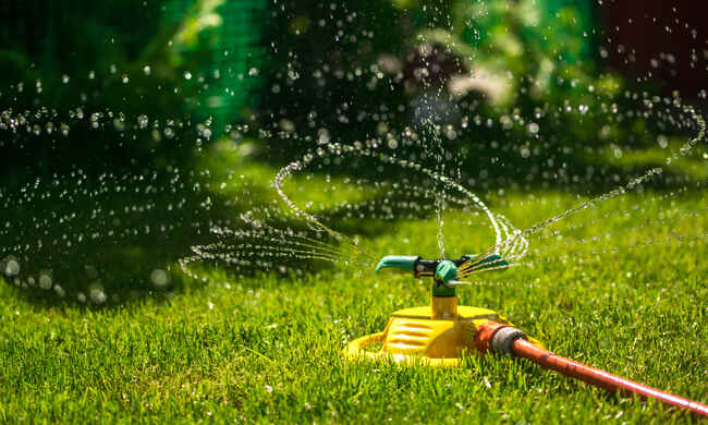 How to get your garden ready for the spring season